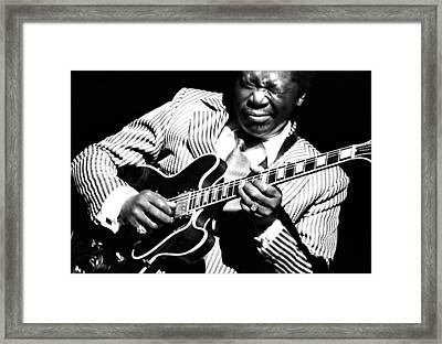 B.b. King - Squeezing Lucille Framed Print