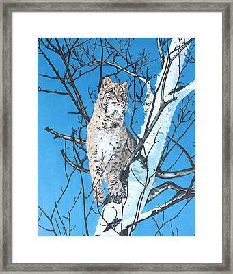 Be Cautious Framed Print