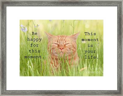 Be Happy For This Moment Framed Print