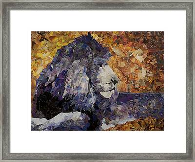 Be Still Framed Print by Claire Muller