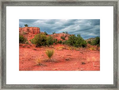 Be Still Framed Print by Roch Hart