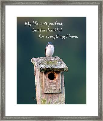 Be Thankful Framed Print by Bill Wakeley