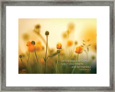 Be Thankful Framed Print