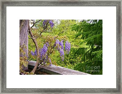 Be There Now -- First Of May Pennsylvania Framed Print