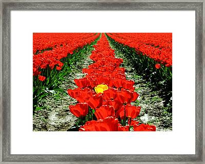 Be Yourself Framed Print by Benjamin Yeager