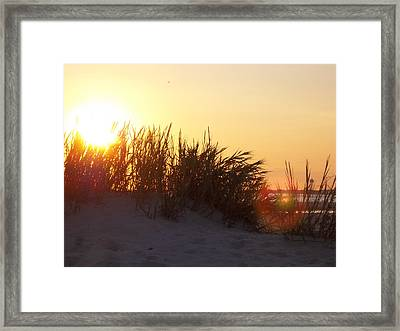Beach #1 Framed Print