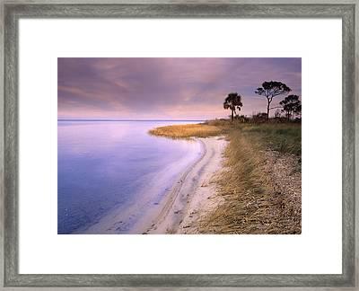 Beach Along Saint Josephs Bay Framed Print by Tim Fitzharris