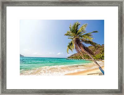 Beach And Palm Tree Framed Print by Jess Kraft