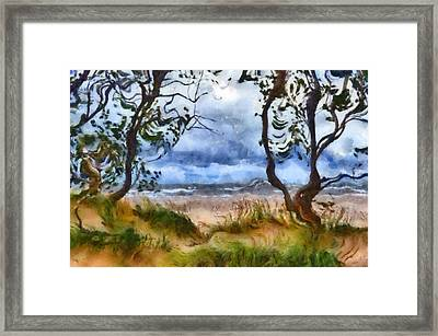 Beach And Trees Framed Print by Michelle Calkins
