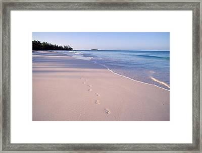 Beach Framed Print by Anonymous