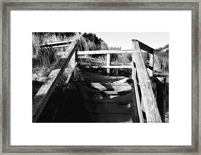Beach Ascent Framed Print by Amanda Holmes Tzafrir