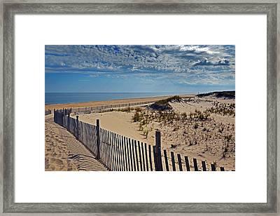 Beach At Cape Henlopen Framed Print