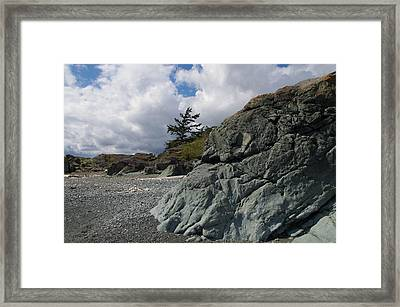 Beach At Fort Rodd Hill Framed Print