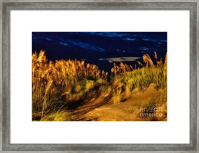 Beach At Night - Outer Banks Pea Island Framed Print by Dan Carmichael