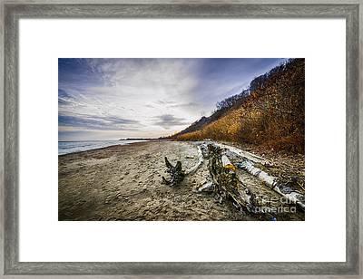 Beach At Scarborough Bluffs Framed Print by Elena Elisseeva