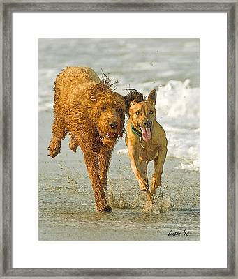 Beach Buddies Framed Print by Larry Linton