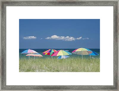 Beach Day Framed Print