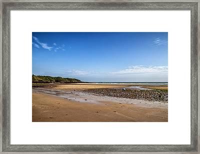 Beach Days Framed Print by Georgia Fowler