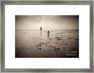 Beach Dog Framed Print by Lee Martin