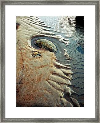 Beach Dreaming  Lll Framed Print