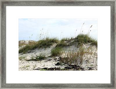 Framed Print featuring the photograph Beach Dune by Chris Thomas