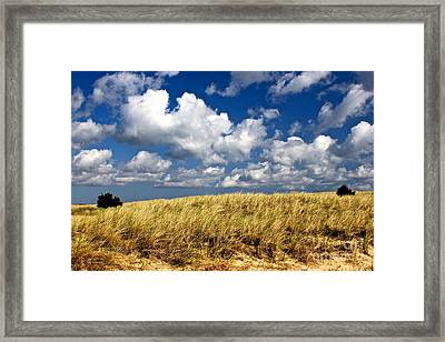 Framed Print featuring the photograph Beach Dunes by Amazing Jules