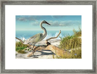 Beach Egret Framed Print