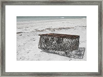 Beach Finds Framed Print by Georgia Fowler