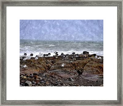 Beach Goers Bgwc Framed Print