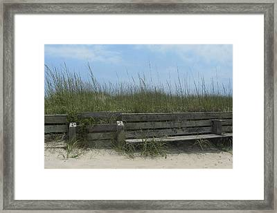 Framed Print featuring the photograph Beach Grass And Bench  by Cathy Lindsey