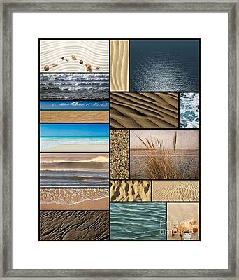 Beach Grass And Shells Collage Framed Print