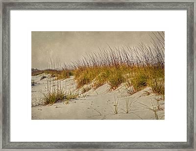 Beach Grass And Sugar Sand Framed Print