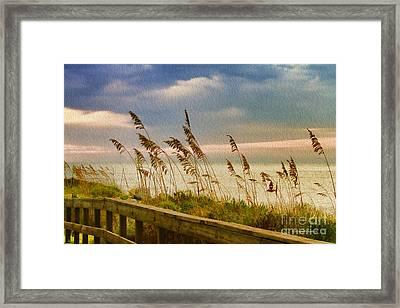 Beach Grass Framed Print by Deborah Benoit