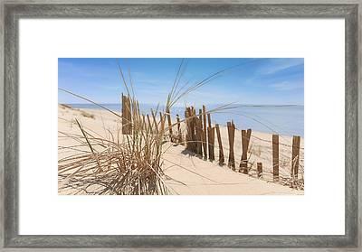 Beach Grass II Framed Print by Dapixara Art