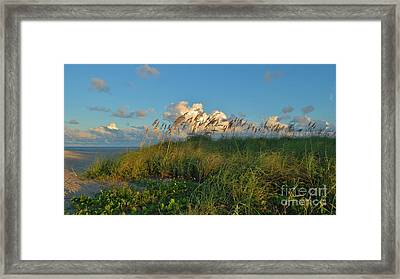 Beach Greenery Panorama Framed Print by Bob Sample