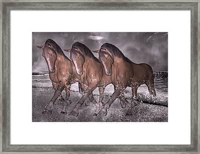 Beach Horse Trio Night March Framed Print
