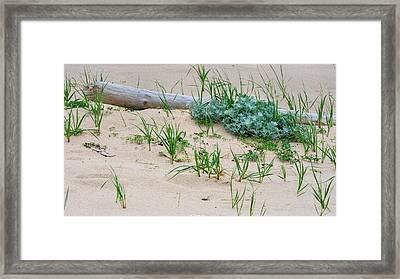 Beach House Art Framed Print