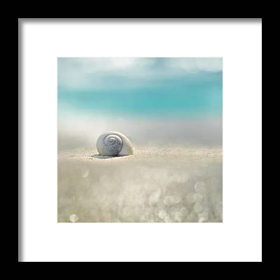 Whimsical Seascape Framed Prints