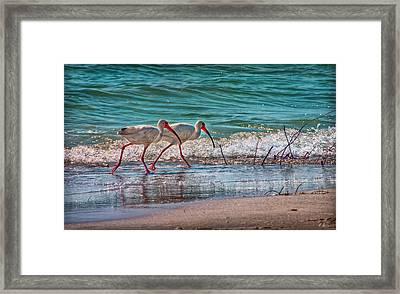 Beach Jogging In Twos Framed Print