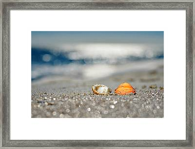 Beach Lovers Framed Print by Laura Fasulo