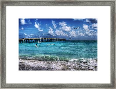 Beach Framed Print by Loyda Herrera