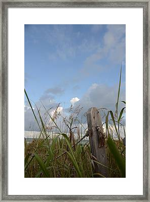 Beach Memories Framed Print by Julie Cameron