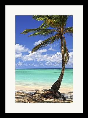 Dominican Framed Prints