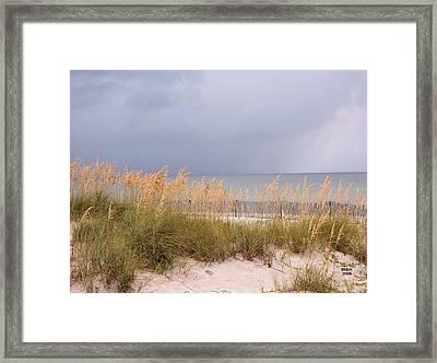 Beach On West Ship Island Framed Print