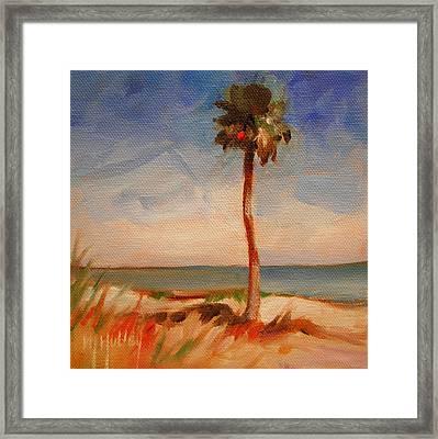 Beach Palm Tree Framed Print by Mary Hubley