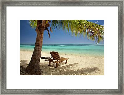 Beach, Palm Trees And Lounger Framed Print