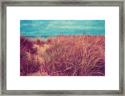 Beach Path Through The Grasses Framed Print