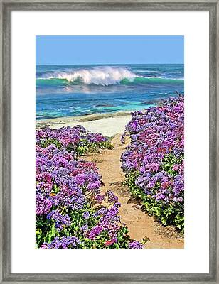 Beach Pathway Framed Print