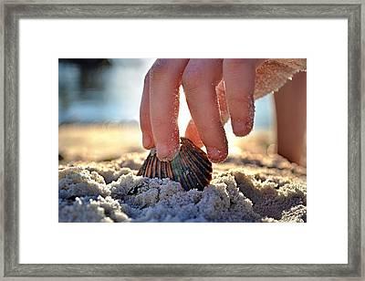Beach Play Framed Print by Laura Fasulo