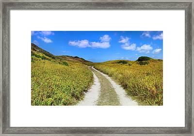 Beach Road Framed Print by Sean Davey